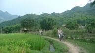Balade à vélo à Mai Chau