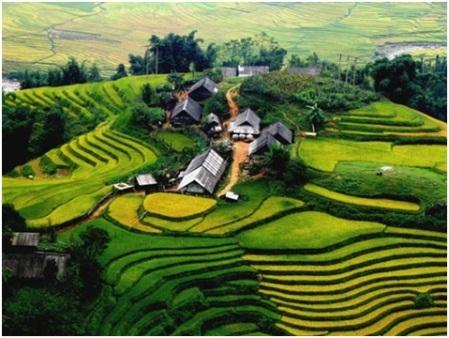 rizieres-en-terrasse-du-Nord