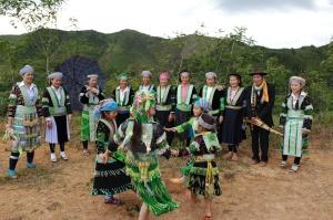 hmong-vert