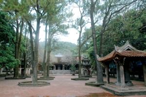 pagode-con-son