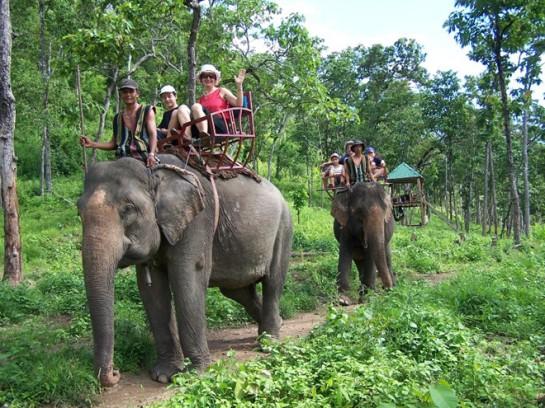 balade a dos elephant